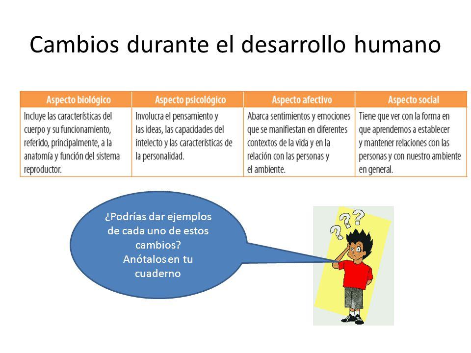 Cambios durante el desarrollo humano