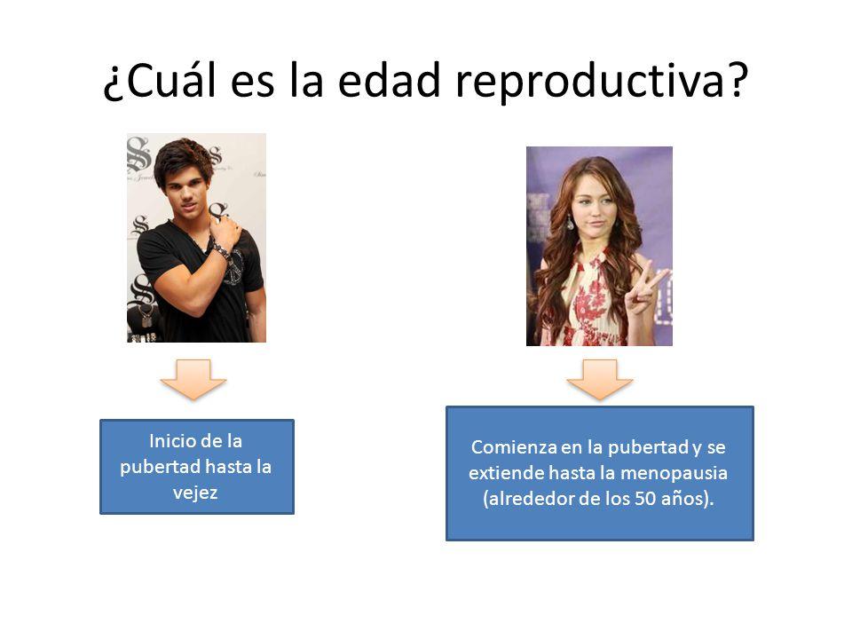 ¿Cuál es la edad reproductiva