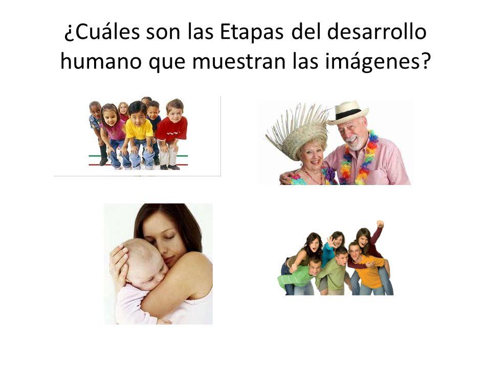 ¿Cuáles son las Etapas del desarrollo humano que muestran las imágenes