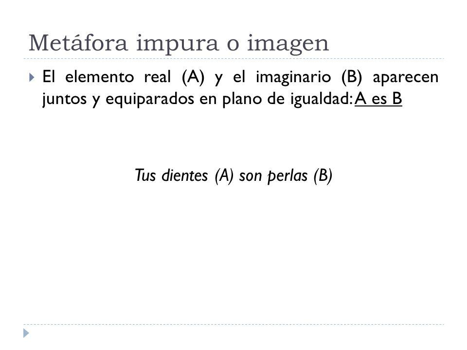 Metáfora impura o imagen