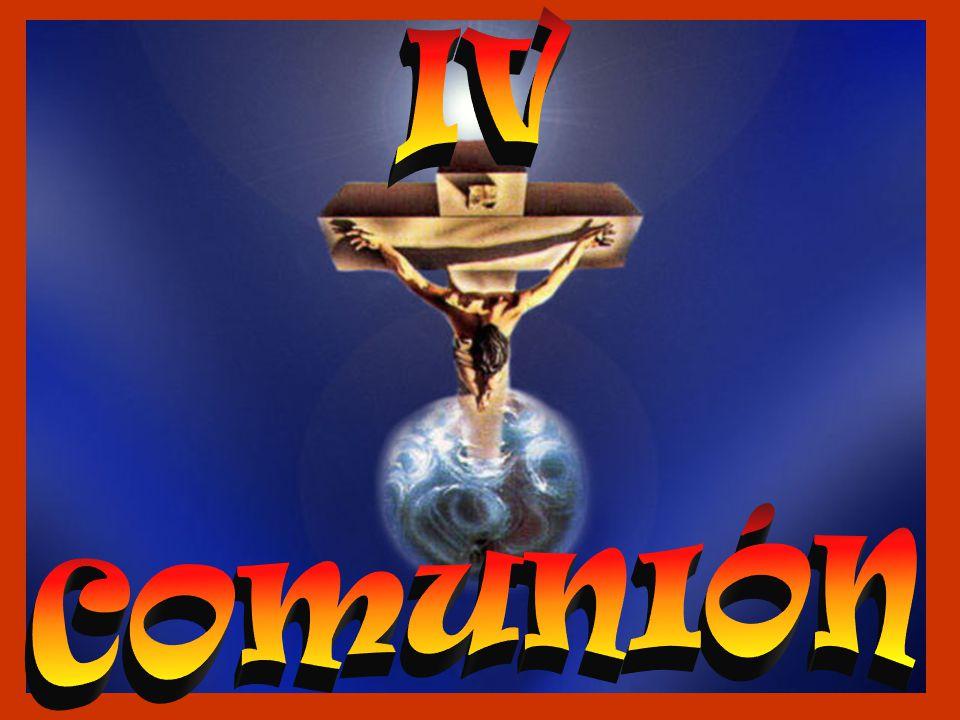 IV COMUNIÓN