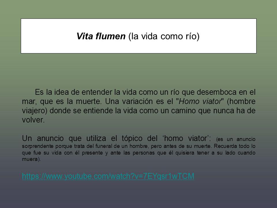 Vita flumen (la vida como río)