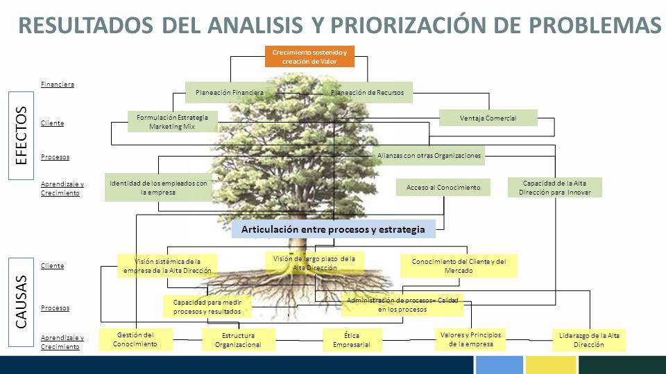 RESULTADOS DEL ANALISIS Y PRIORIZACIÓN DE PROBLEMAS