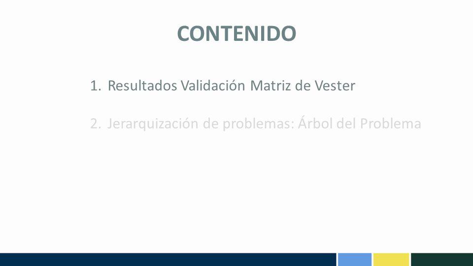 CONTENIDO Resultados Validación Matriz de Vester