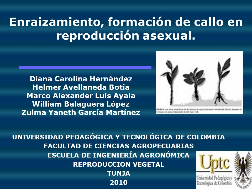 Hormonas reguladoras de la reproduccion asexual