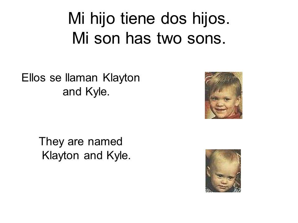 Mi hijo tiene dos hijos. Mi son has two sons.