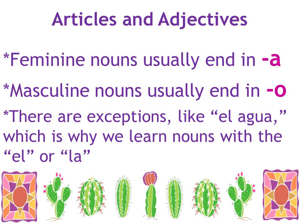 Articles and Adjectives