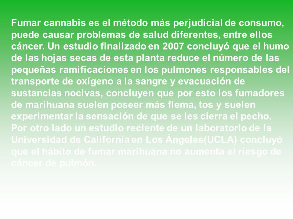 Marihuana ppt descargar for Se puede fumar en las piscinas