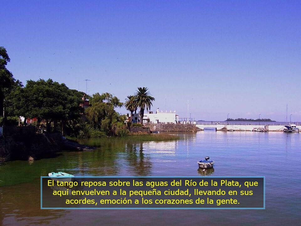 P0016926 - PUNTA DEL ESTE - RIO DA PRATA E ILHA-700