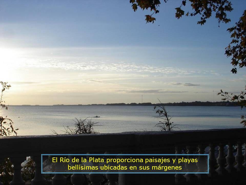 P0016850 - PUNTA DEL ESTE - PRAIA MANSA-700