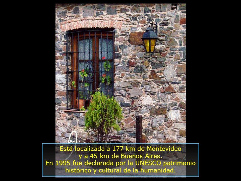 IMG_6918 - PUNTA DEL ESTE - AVENIDA ATRÁS DO HOTEL-700.jpg