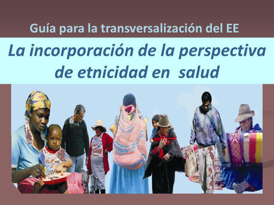 La incorporación de la perspectiva de etnicidad en salud