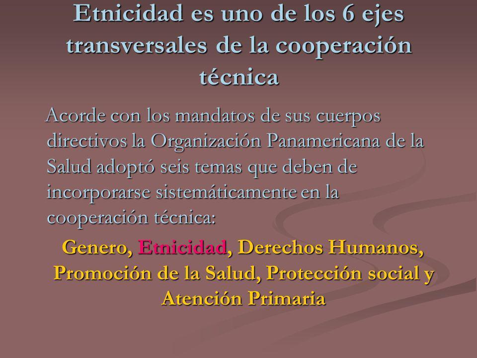 Etnicidad es uno de los 6 ejes transversales de la cooperación técnica