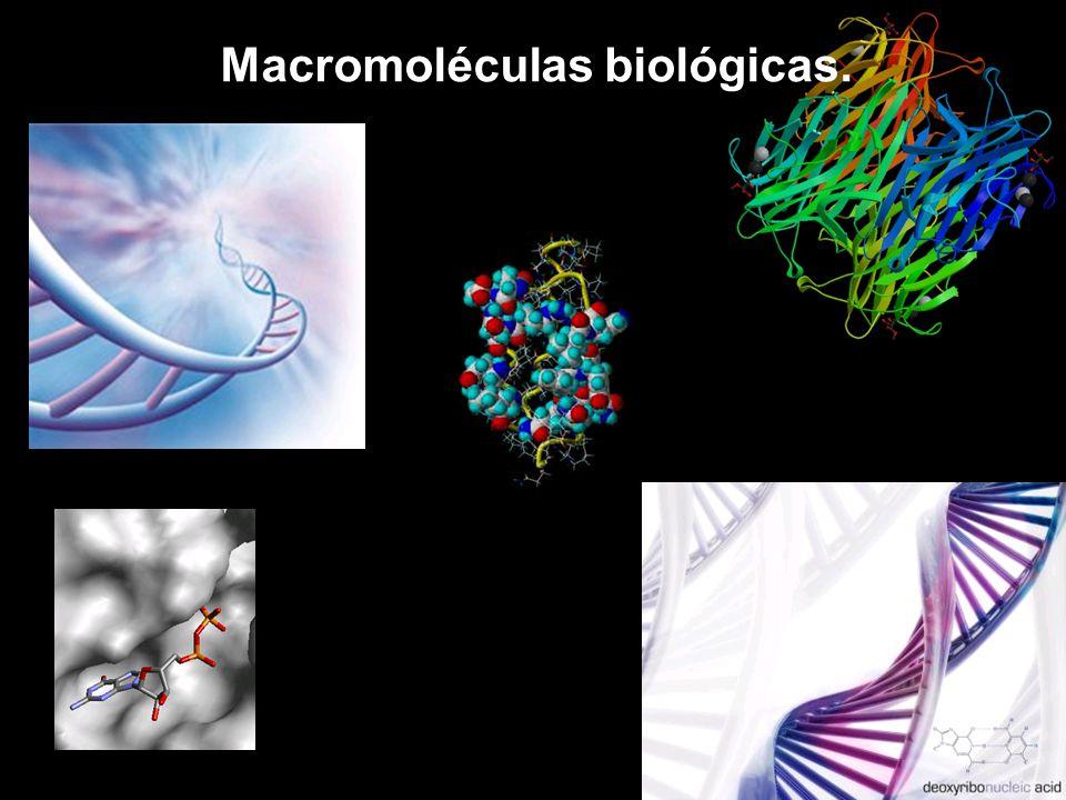 Resultado de imagen de Macromoléculas