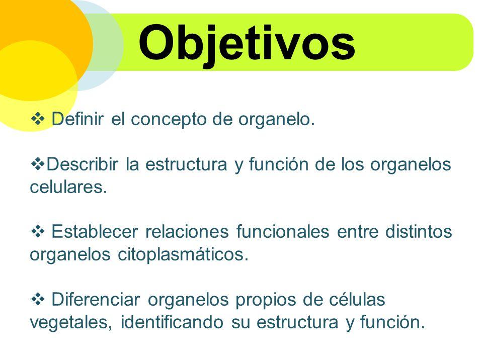Objetivos Definir el concepto de organelo.