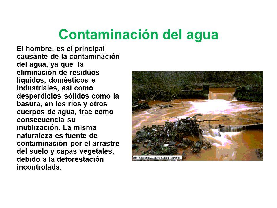 Contaminaci n del suelo ppt video online descargar for Informacion sobre el suelo