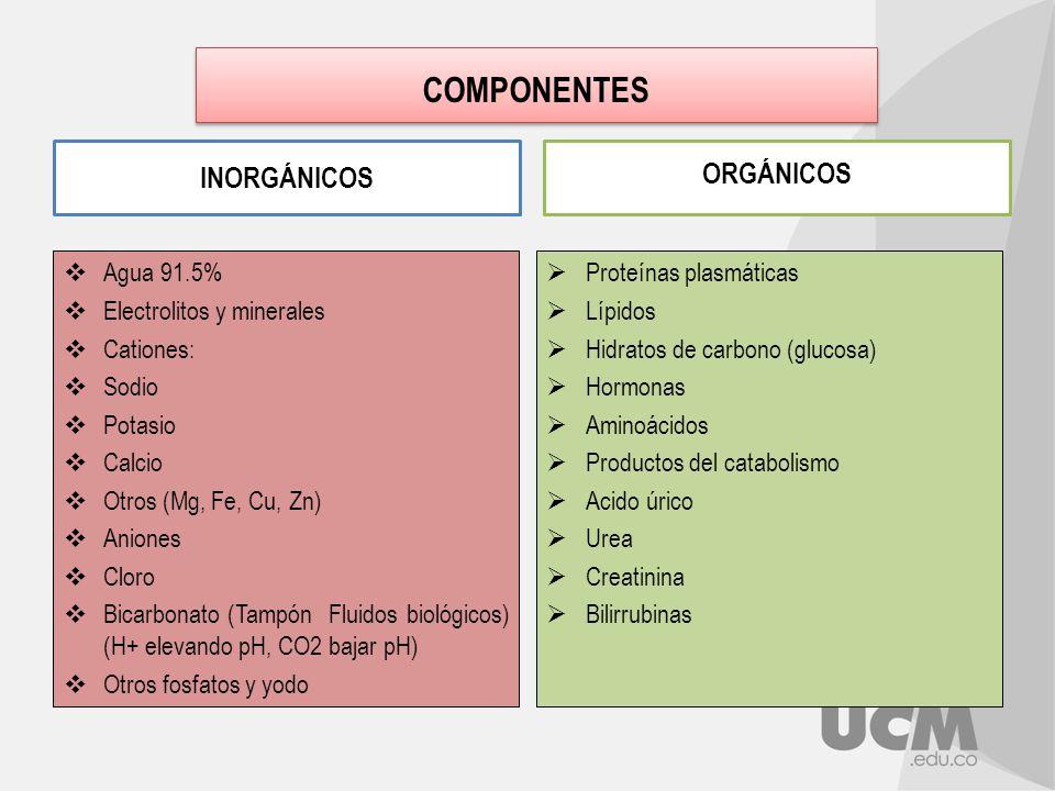 alimentos prohibidos cuando se tiene acido urico alto jarabe natural para la gota hierbas para el acido urico