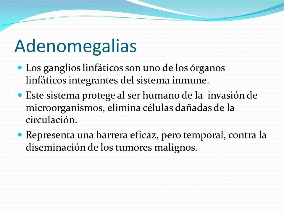 Adenomegalias Los ganglios linfáticos son uno de los órganos linfáticos integrantes del sistema inmune.