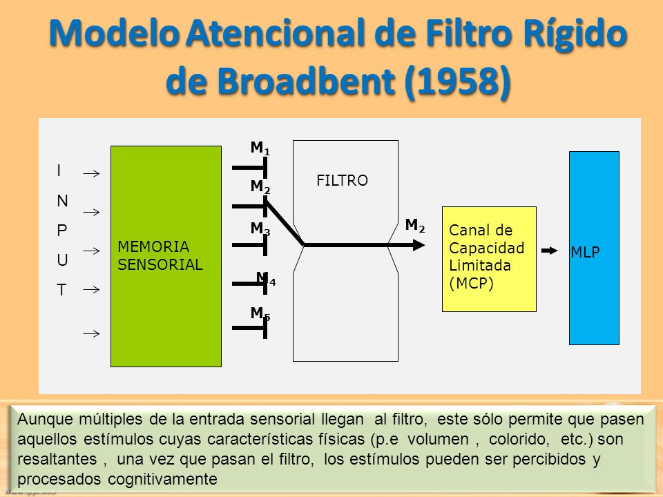 Atenci N Y Conciencia Profa Carolina Mora Ppt Descargar