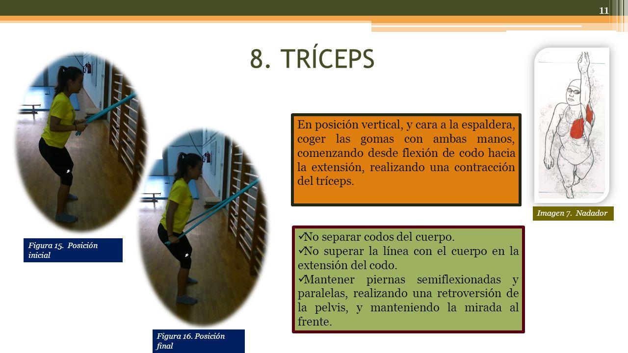 8. TRÍCEPS