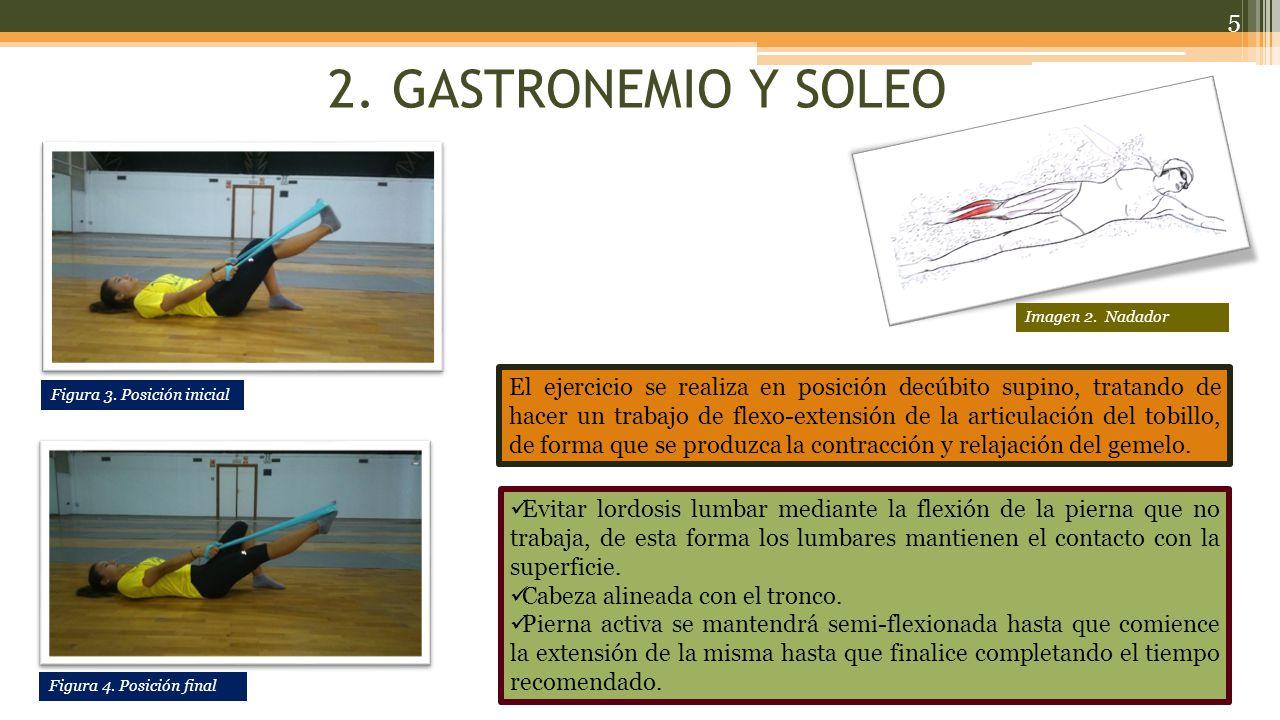 2. GASTRONEMIO Y SOLEO Imagen 2. Nadador.