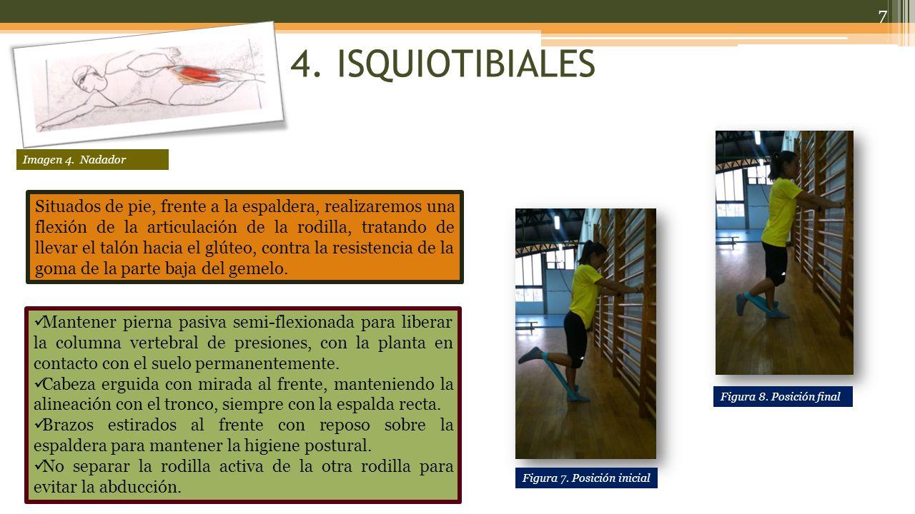 4. ISQUIOTIBIALES Imagen 4. Nadador.