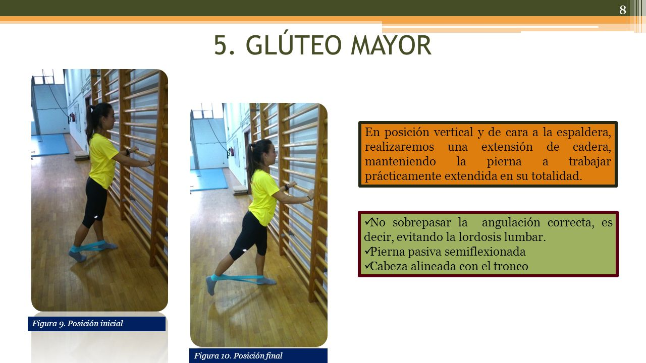 5. GLÚTEO MAYOR