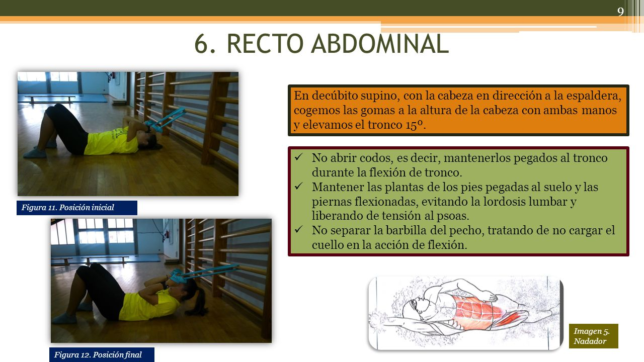 6. RECTO ABDOMINAL