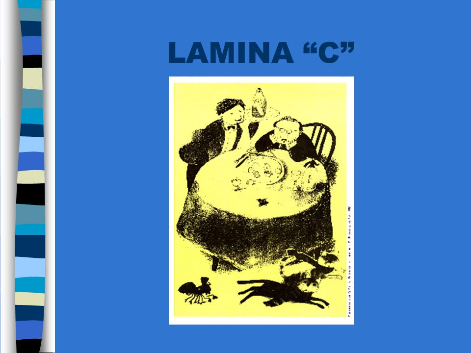 LAMINA C