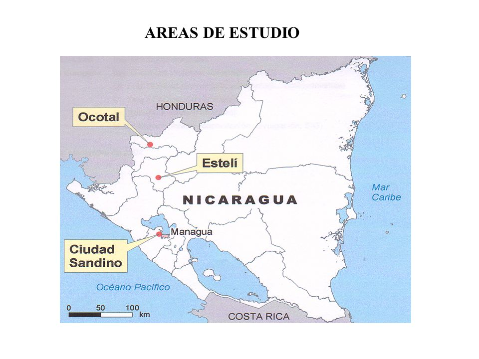 AREAS DE ESTUDIO