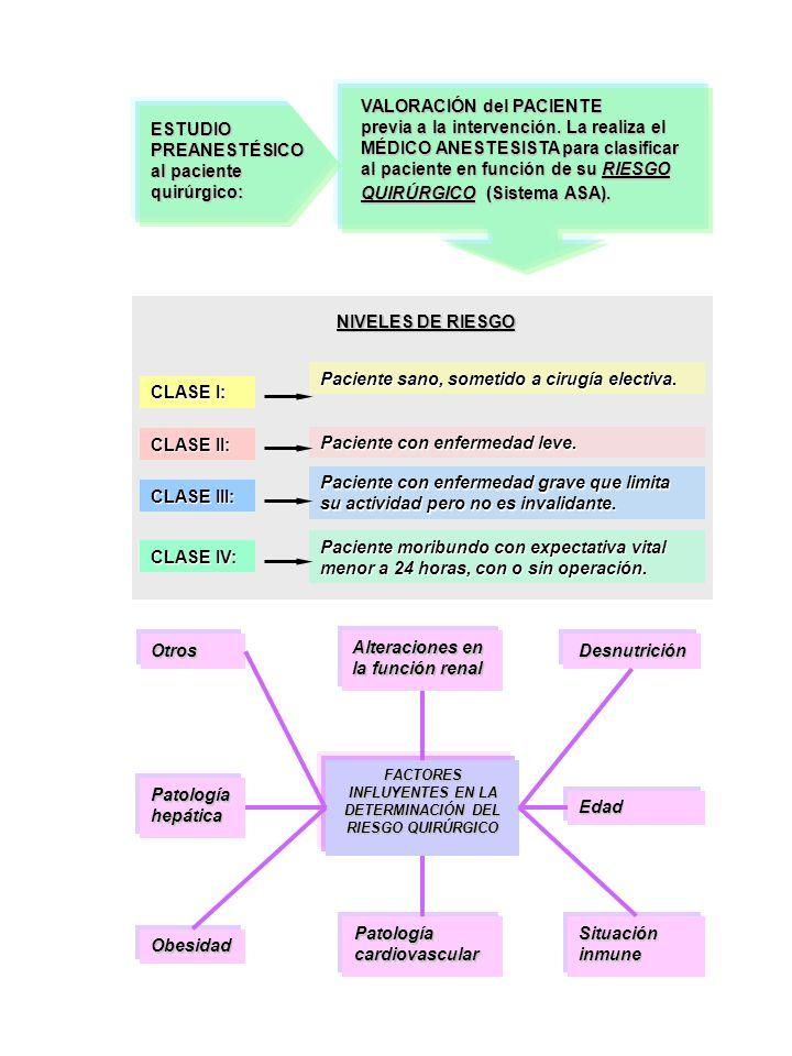 FACTORES INFLUYENTES EN LA DETERMINACIÓN DEL RIESGO QUIRÚRGICO