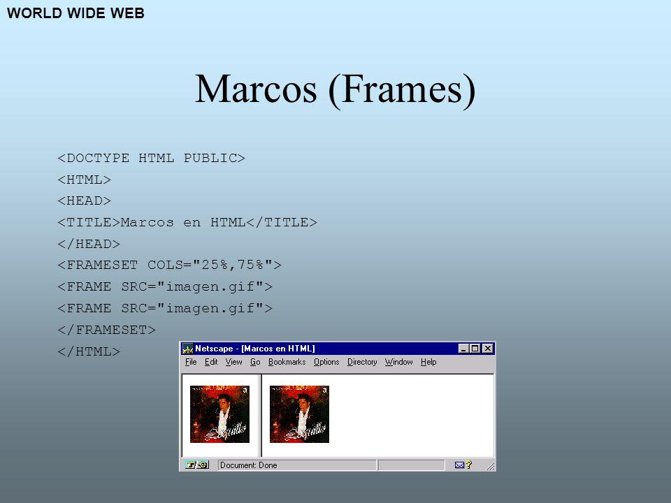 WORLD WIDE WEB Lenguaje HTML - ppt descargar