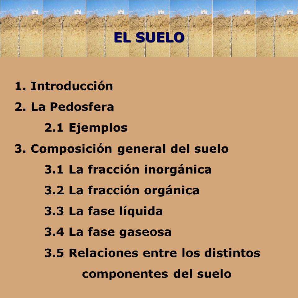 Tema 1 el suelo ppt descargar for Componentes quimicos del suelo