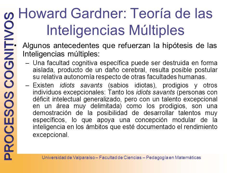 howard gardner outline The theory of multiple intelligences was developed in 1983 by dr howard gardner, professor of education at harvard university it suggests that the traditional notion of intelligence, based on iq testing, is far too limited.