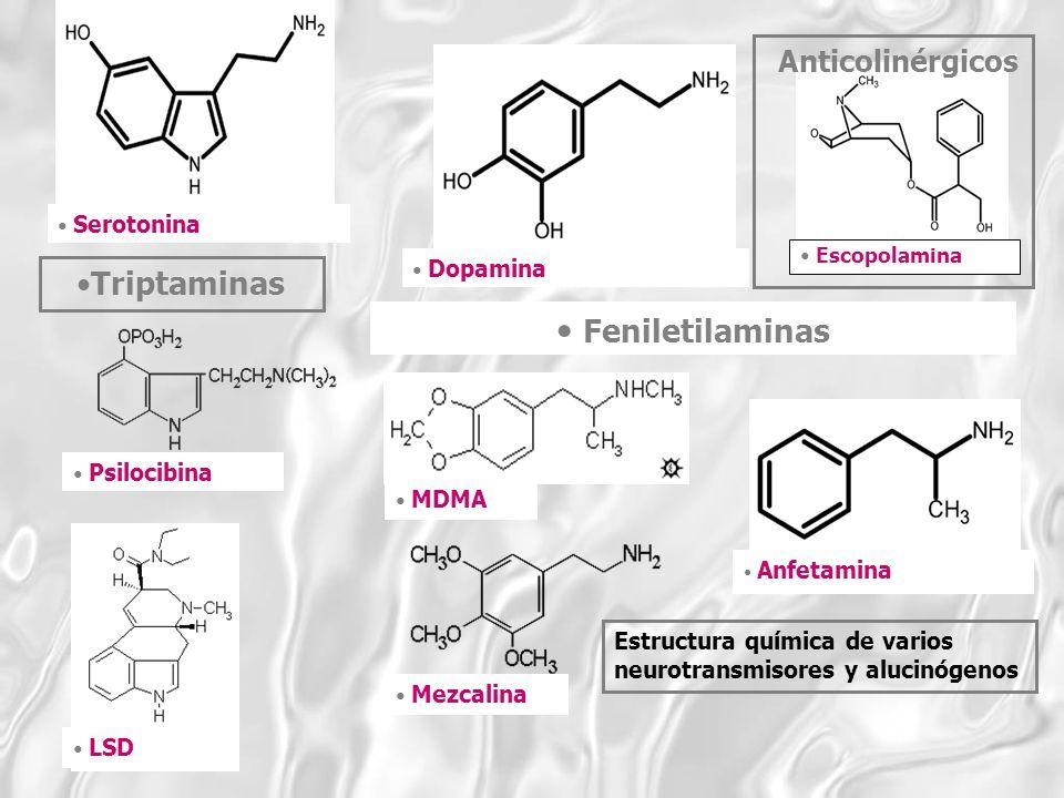 Anticolinérgicos Feniletilaminas