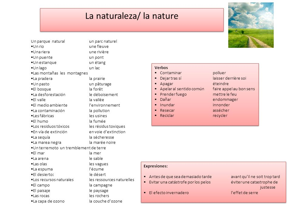 La naturaleza/ la nature