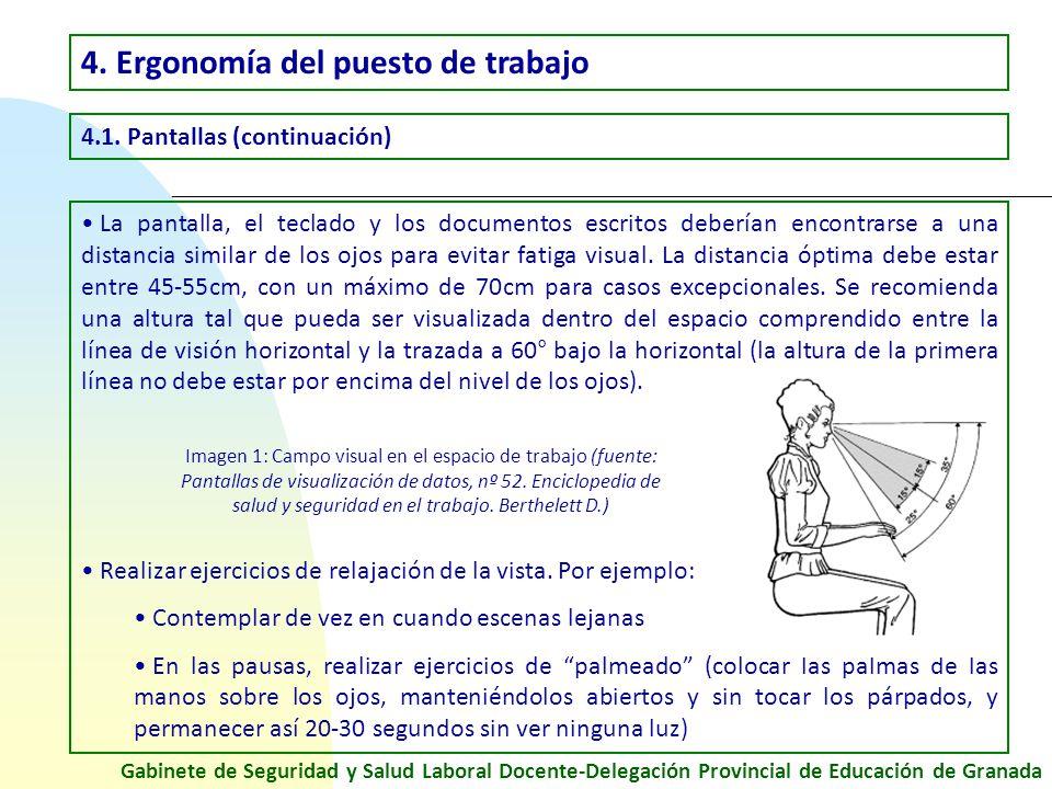 Prevenci n de riesgos laborales en el trabajo con for Espacio de trabajo ergonomia