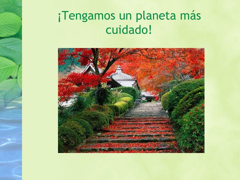 ¡Tengamos un planeta más cuidado!