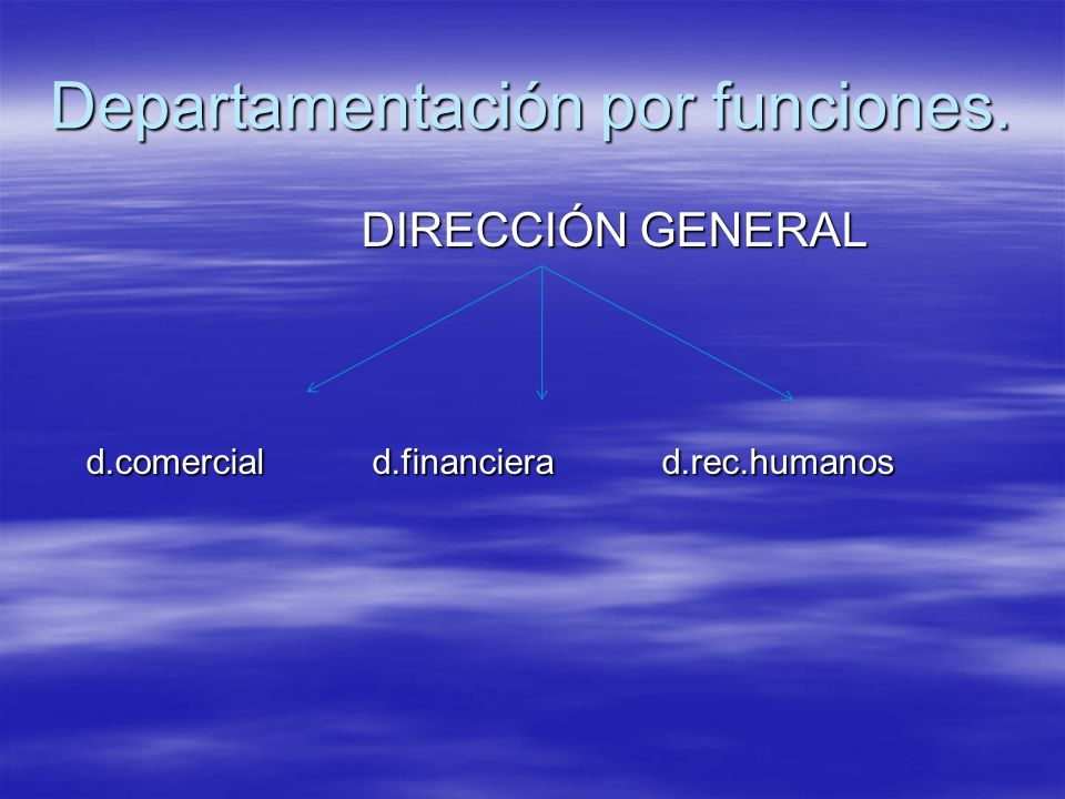 Departamentación por funciones.