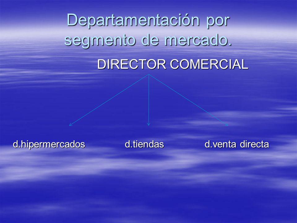 Departamentación por segmento de mercado.