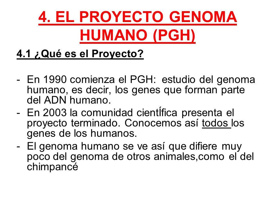 Antes pens bamos que el estaba en las estrellas ppt for En 2003 se completo la secuenciacion del humano