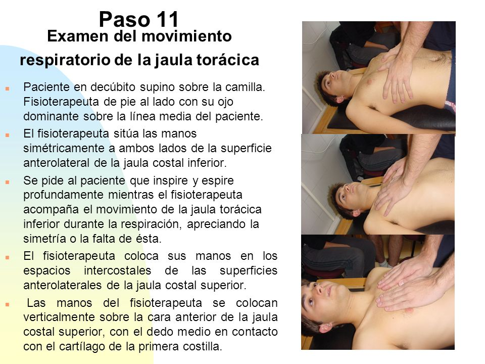 Paso 11 Examen del movimiento respiratorio de la jaula torácica