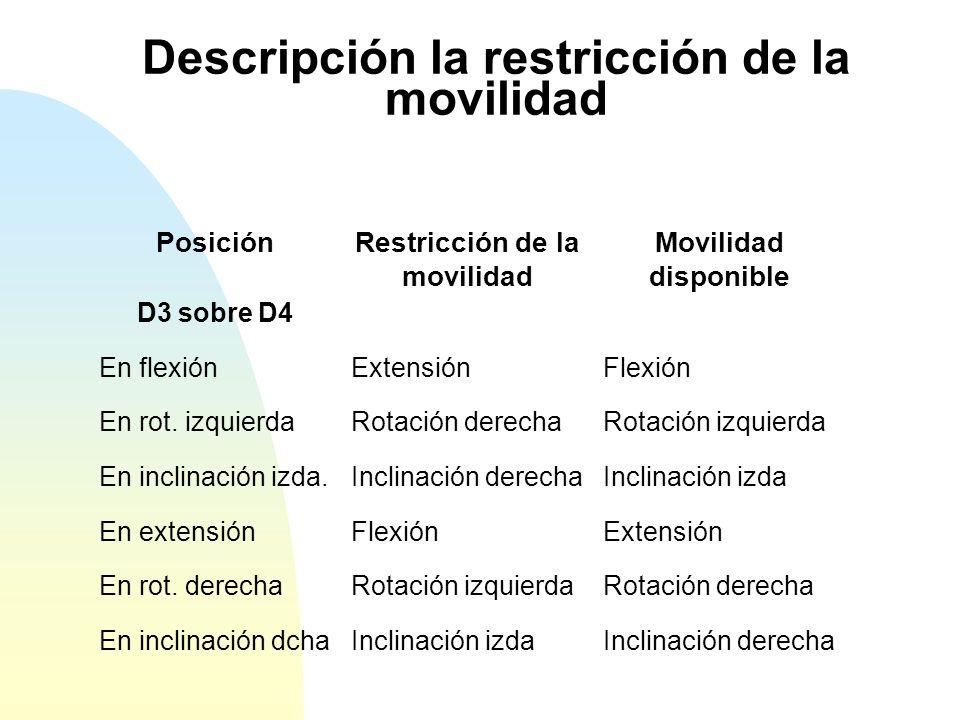 Descripción la restricción de la movilidad
