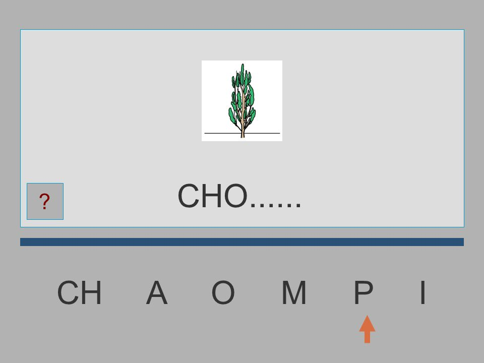 CHO...... CH A O M P I