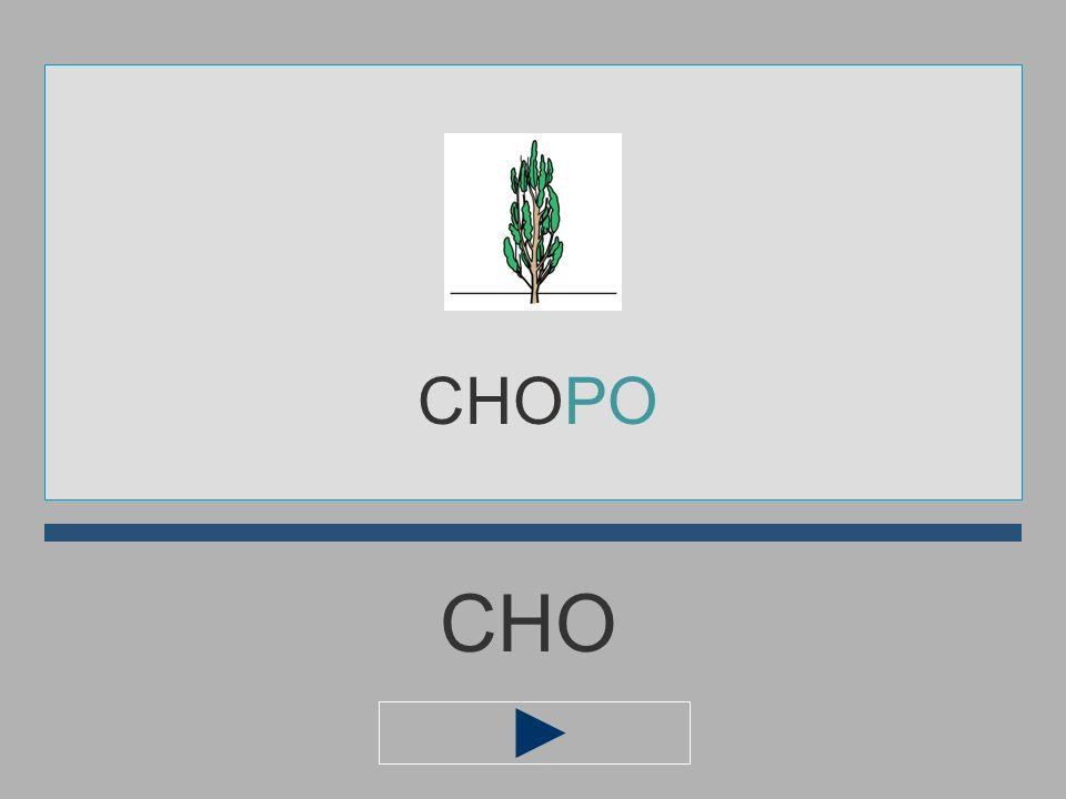 CHOPO CHO