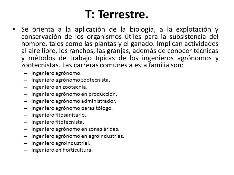 T: Terrestre.