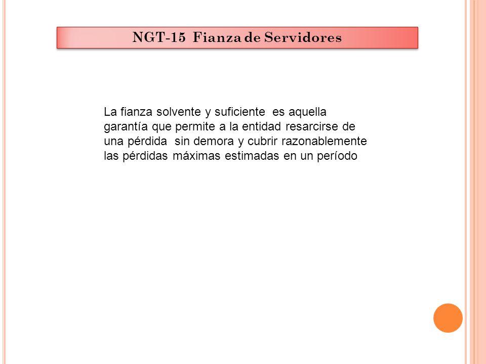 NGT-15 Fianza de Servidores