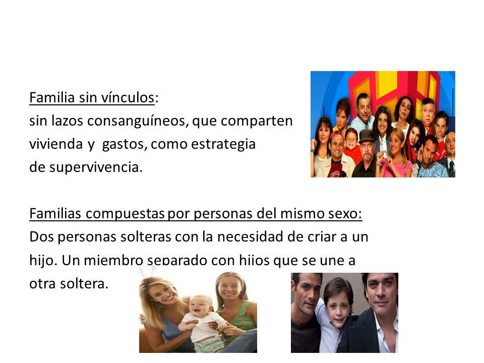 Familia sin vínculos: sin lazos consanguíneos, que comparten. vivienda y gastos, como estrategia.