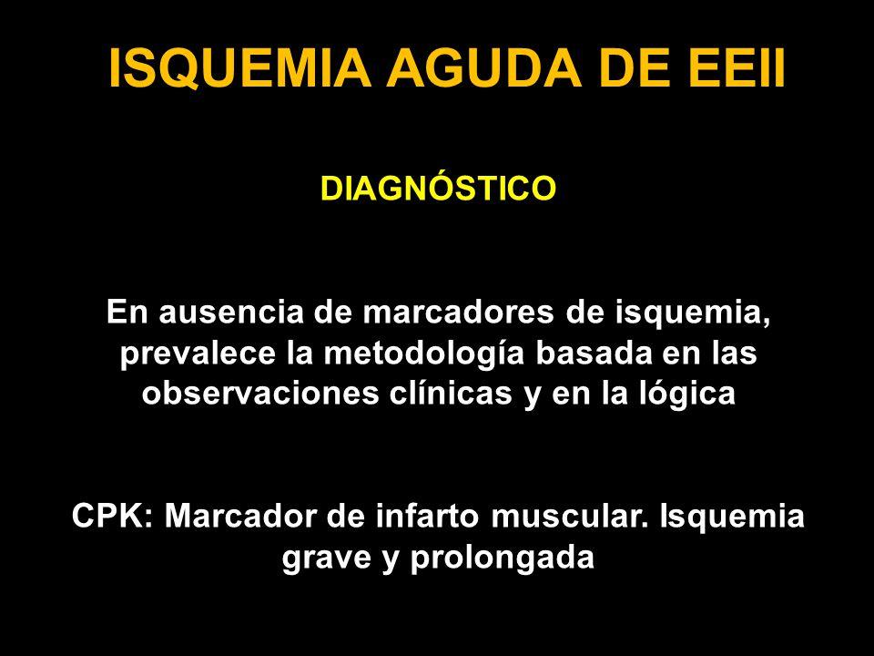 CPK: Marcador de infarto muscular. Isquemia grave y prolongada