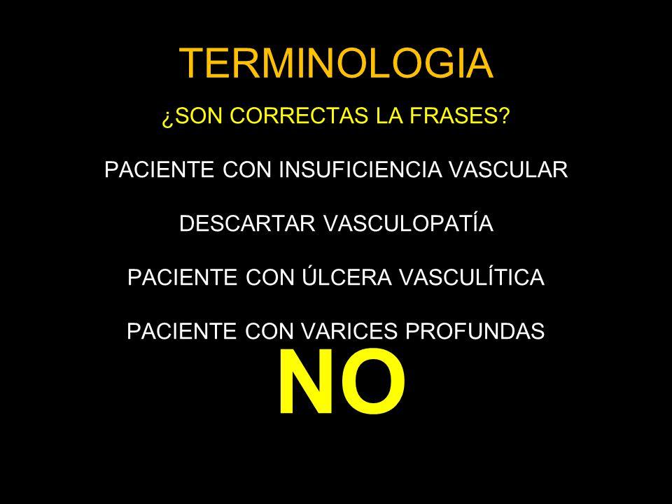 NO TERMINOLOGIA ¿SON CORRECTAS LA FRASES